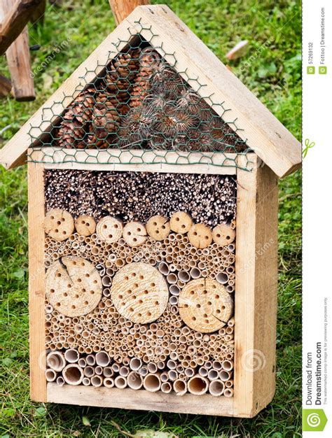 bug house plans insect house stock photo image 57269132