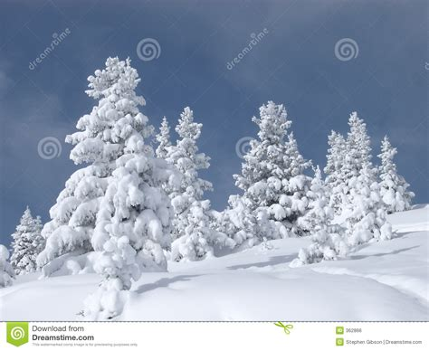 school in snow royalty free stock image image snow covered trees royalty free stock image image 362866