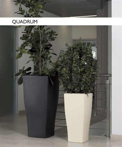 vasi da arredamento vasi da arredamento design ispirazione di design interni