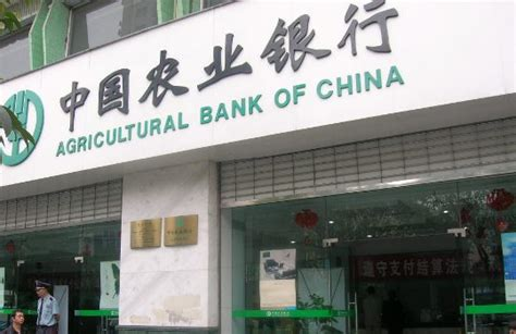 agricultural bank of china ftz agricultural bank of china hengqin branch opens