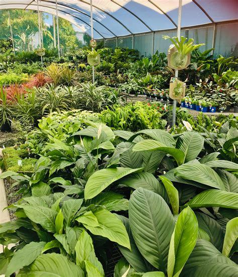 ross evans garden centre brisbane