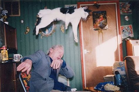 richard billingham rays alley cats ray s a laugh by richard billingham