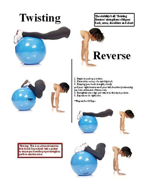 1000 images about excersices on exercises fitness exercises and swiss