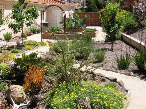 backyard design san diego best modern backyard design san diego 13 31578