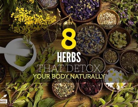 Herbs For Bath Detox by 17 Best Images About Diy Detox Soak Bath On