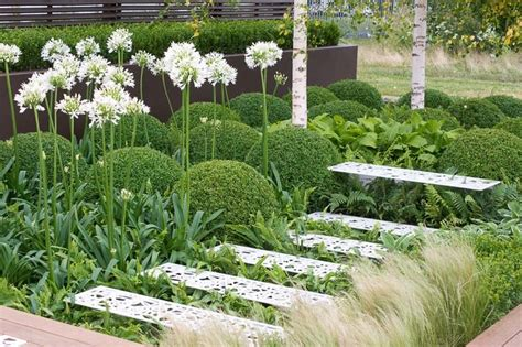 Plam Ekor Tupai an attractive shady garden with ferns hostas and agapanthus