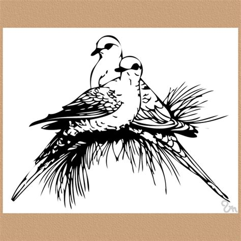 turtle dove drawing clipart best