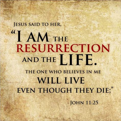 god still raises the dead amazing testimonies of god s resurrection power volume 11 books the 22 best images about bible jesus and lazarus on