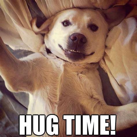 puppy hug hug time puppy