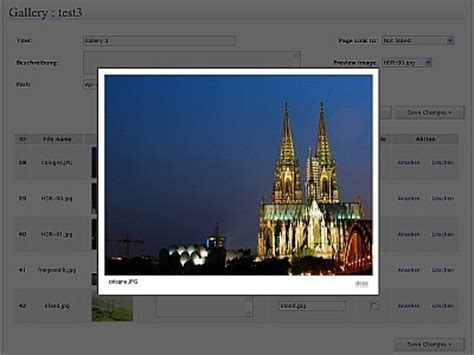 themes for nextgen gallery 100 most popular wordpress plugins