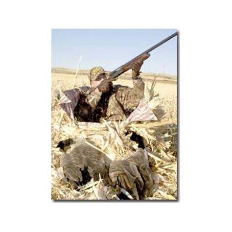 layout blind turkey hunting bgftrst layout blinds equal waterfowl hunting success