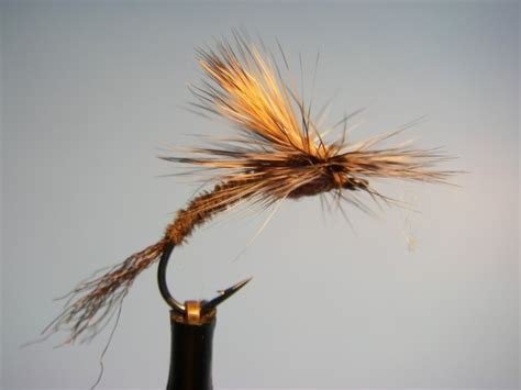 brown drake pattern trout current works guide service