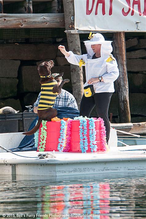 boatyard show mb h show world chionship boatyard dog 174 trials