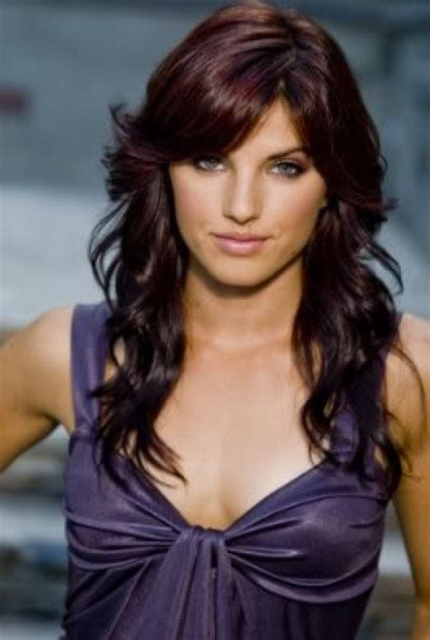 dark brown hair color with red tint brown purple hair color 17 best images about hair color on pinterest dark dark