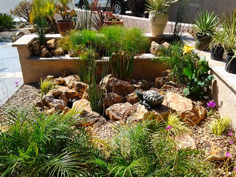 Rock Garden With Potted Plants Drought Tolerant Landscapes Protected Oakland Oak Tree With Flagstone And Dg Notice The Space