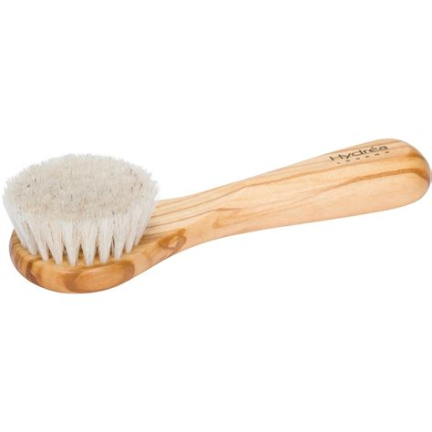 Cactus Detox Brush by Hydrea Professional Brush With