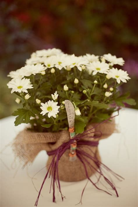 25  best ideas about Fall Wedding Mums on Pinterest   Fall