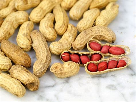 Planters Peanuts Gmo by Tennessee Peanut Seeds Baker Creek Heirloom Seed Co