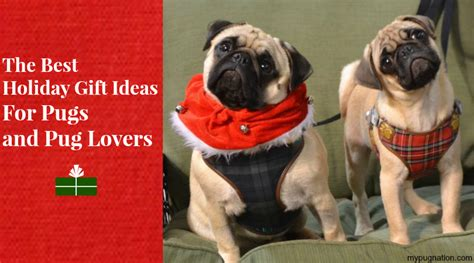 gift ideas for pug the best gift ideas for pugs and pug mypugnation
