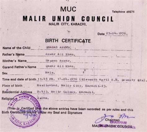 28 hospital birth certificate template 15 birth