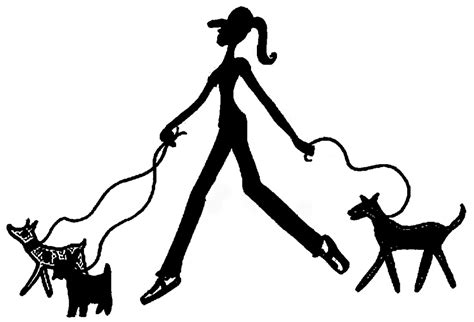 when can a puppy go outside for walks walking vs pet sitting what s the difference