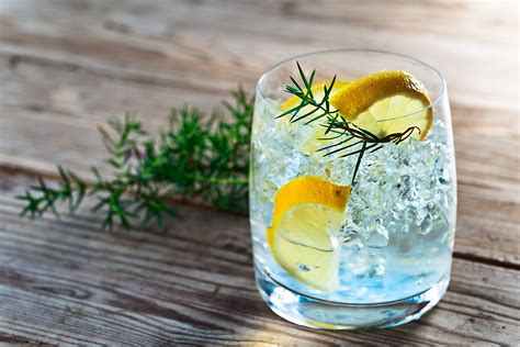 best gin drink gin cocktail for the summer