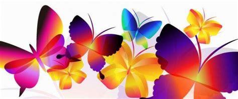 imagenes mariposas para facebook imagenes de mariposas para perfil de facebook imagui