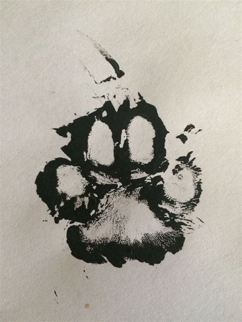 paw print with name foot real paw print using paint of my dogs mitzi s foot sweet