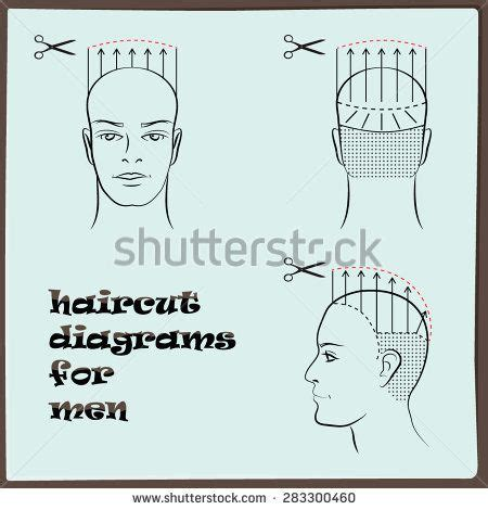 haircut diagrams how to 1000 images about diagram haircut on pinterest
