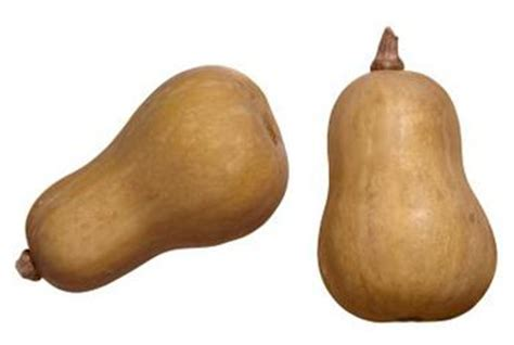 carbohydrates butternut squash is butternut squash a complex carbohydrate healthy