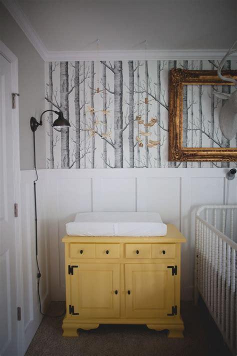 beadboard nursery ideas 25 best ideas about birch tree wallpaper on