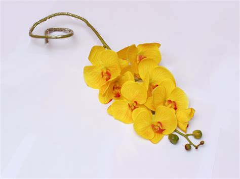 Pot Anggrek Bulan jual bunga hias bunga anggrek bulan kuning happy