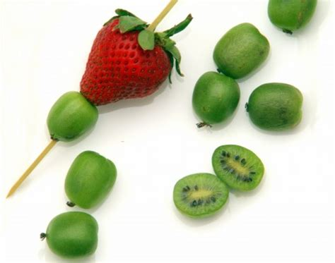 Introducing Baby Kiwi by Baby Kiwi Or Kiwi Berries Tiny Kiwi Are The Fruit Of The