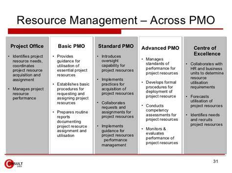 Project Management Office Pmo Pmo Resource Management Template