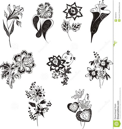 fiori bianco e nero fiori in bianco e nero stilizzati illustrazione di stock