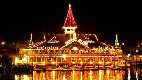 cruise of lights newport ca 103 best newport ca palm trees images on