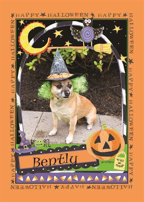 halloween flag featuring  favorite pet photo