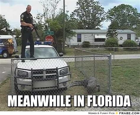 Funny Florida Gator Memes - meanwhile in florida meme generator captionator can