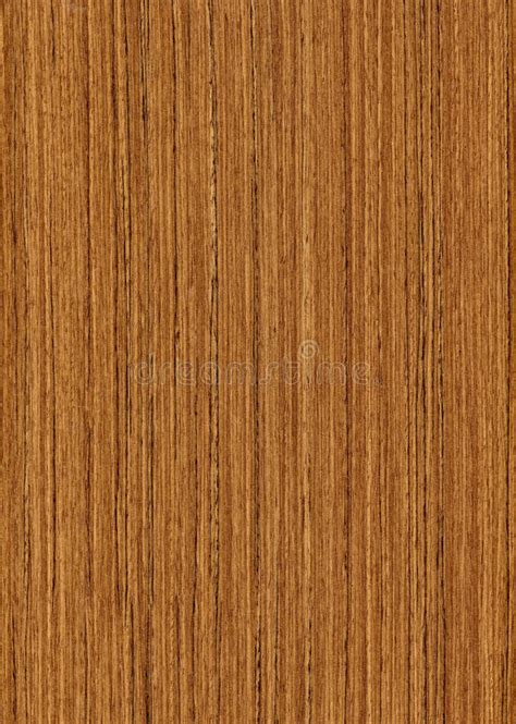 wood texture teak stock photo image  lumber effect