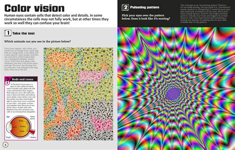 color illusions color illusions visual tricks fantastic facts and