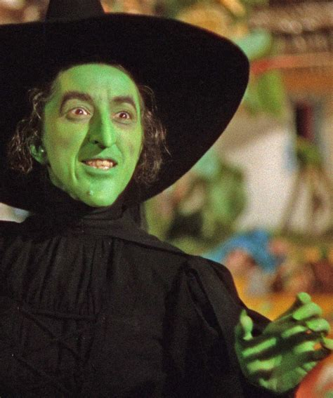 the wicked the 26 best images about costume oz on brooches wicked witch and colored wigs