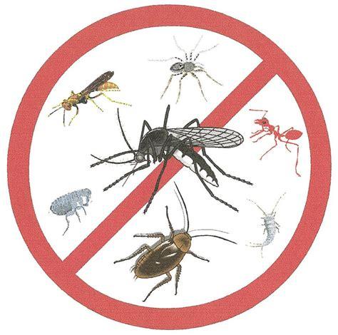 imagenes de insecticidas naturales emprendedores y medio ambiente insecticidas y fungicidas