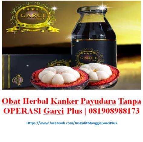 Obat Herbal Kanker Payudara obat herbal kanker payudara tanpa operasi garci plus 081908988173