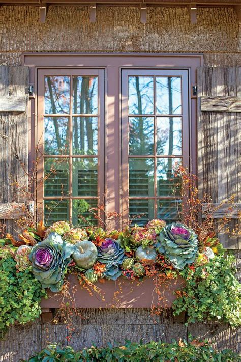 decorating window boxes for fall transitional window box fabulous fall decorating ideas