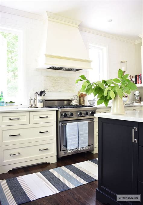 Black And White Striped Kitchen Rug by 25 Best Ideas About Stripe Rug On Striped Rug
