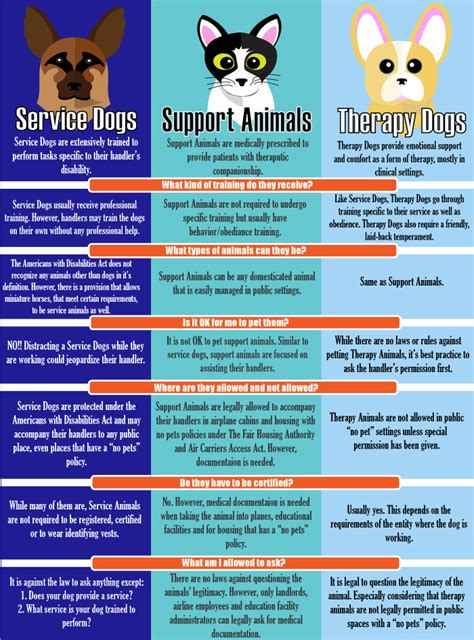 difference between service and therapy infographic learn the difference between service dogs support animals and therapy