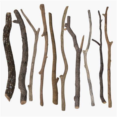 Stick Es Stik Es twig stick www imgkid the image kid has it