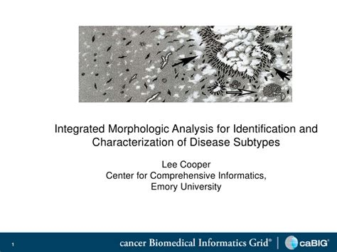 Integrated Mba Course Detail by Dr Cooper Integrated Morphologic Analysis For