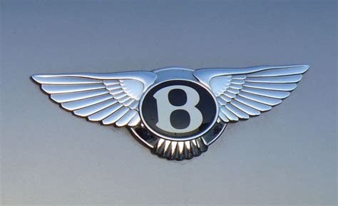 car logo with bird wing car pictures car