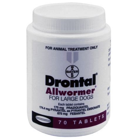 drontal for dogs drontal allwormer tablets for dogs 35kg ebay